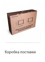 Коробка поставки